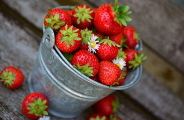Are You Fishing With Strawberries?